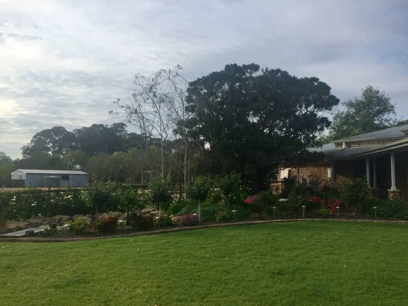 Housesitting assignment in Galston, New South Wales, Australia
