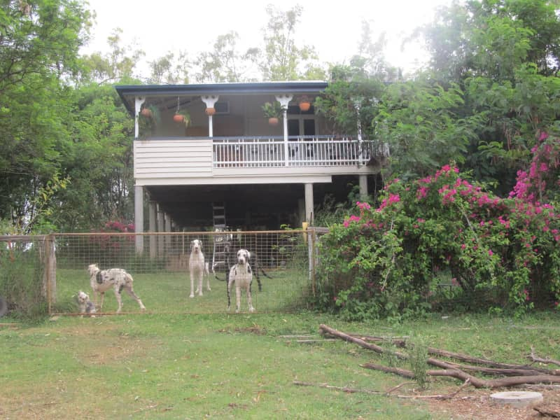 Housesitting assignment in Gatton, Queensland, Australia