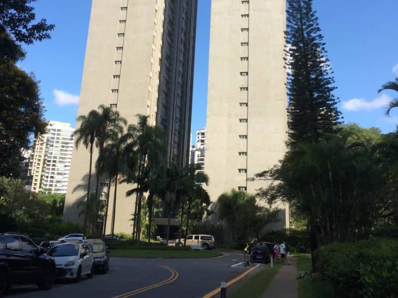 Housesitting assignment in São Paulo, Brazil
