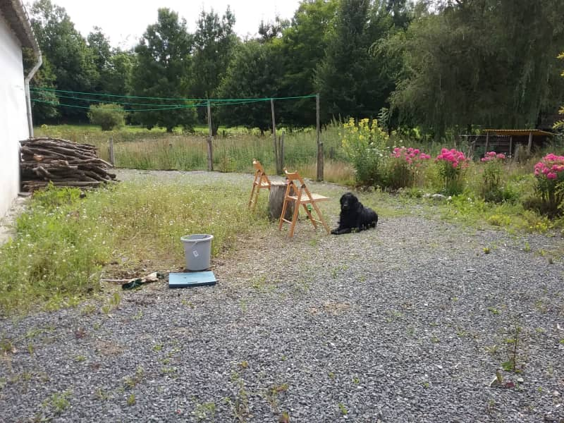 Housesitting assignment in Straimont, Belgium