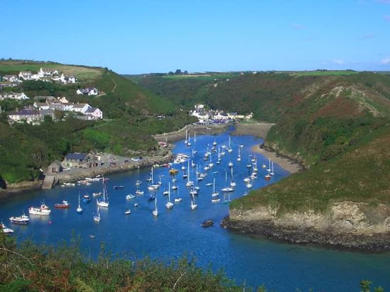 Housesitting assignment in Solva, United Kingdom