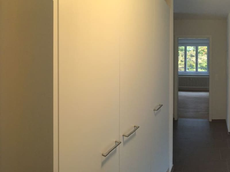Housesitting assignment in Luzern, Switzerland