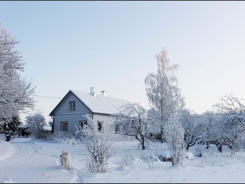 Housesitting assignment in Mikkeli, Finland