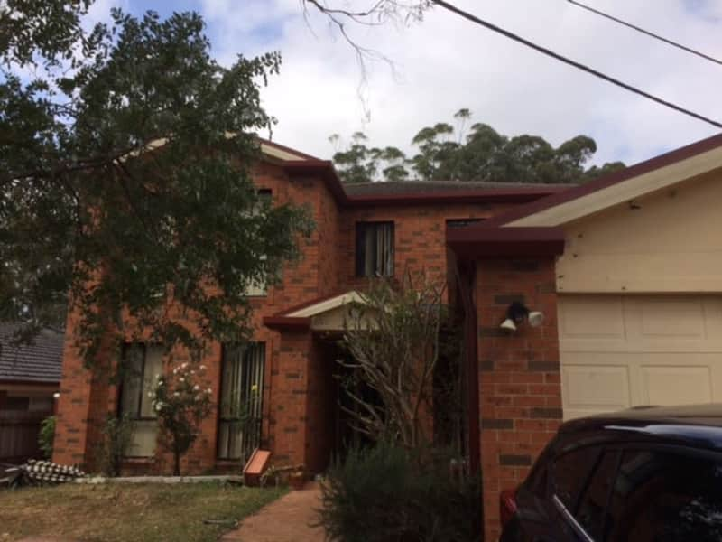 Housesitting assignment in Rydalmere, New South Wales, Australia