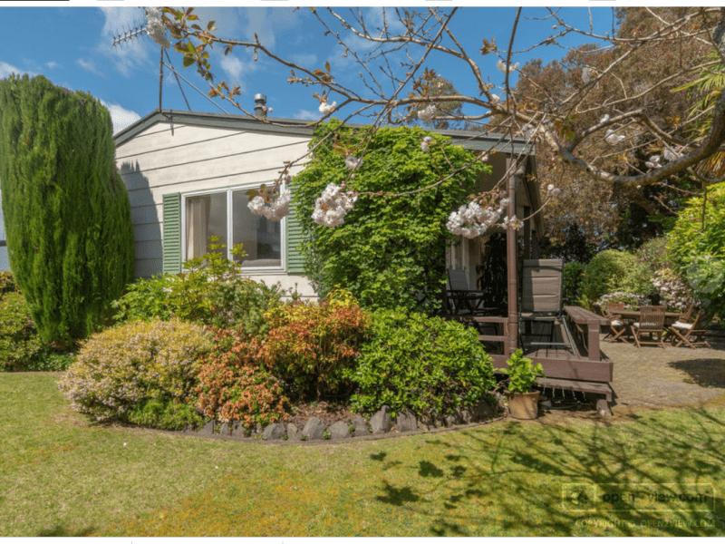 Housesitting assignment in Tauranga, New Zealand