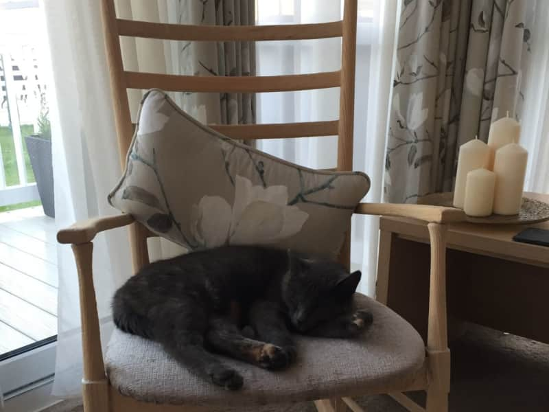 Housesitting assignment in Ainsdale, United Kingdom