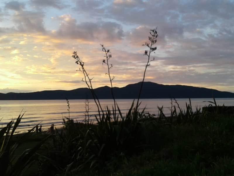 Housesitting assignment in Raumati Beach, New Zealand
