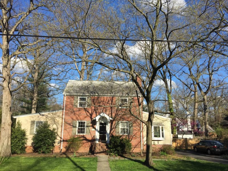 Housesitting assignment in College Park, Maryland, United States