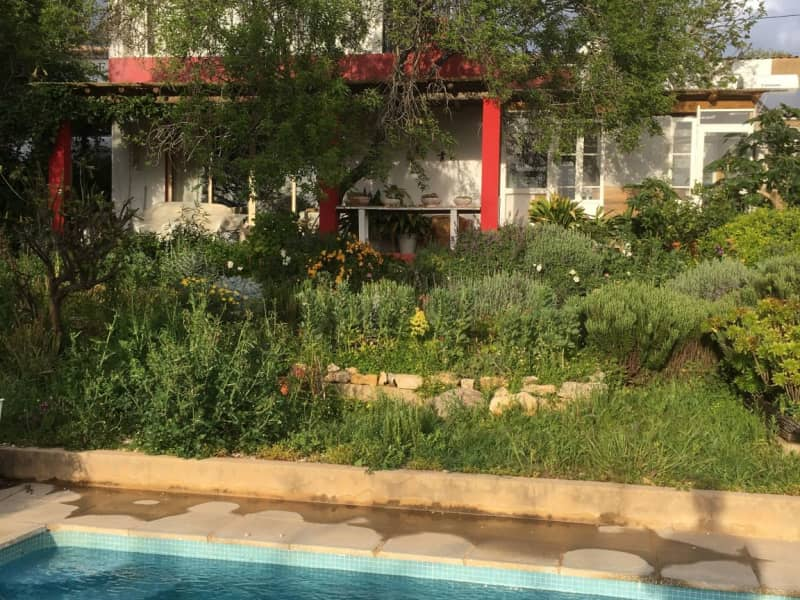 Housesitting assignment in Paderne, Portugal