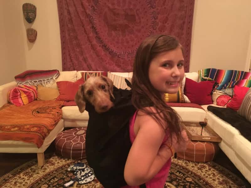 Housesitting assignment in Tyler, Texas, United States