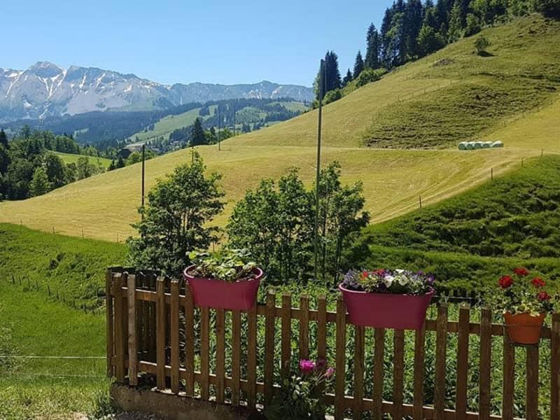 Housesitting assignment in Sörenberg, Switzerland
