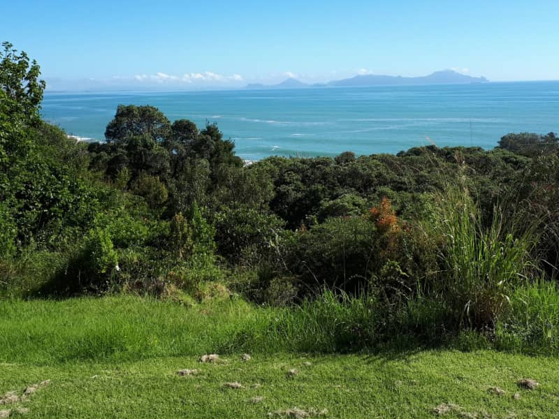 Housesitting assignment in Waipu Cove, New Zealand