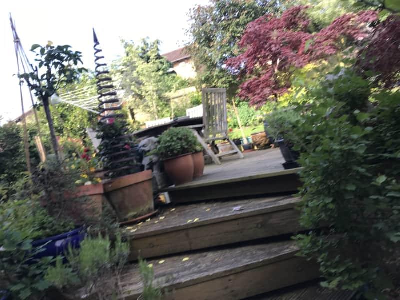 Housesitting assignment in Northampton, United Kingdom