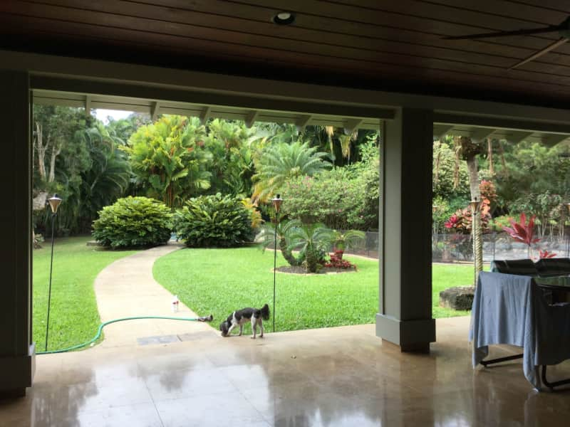Housesitting assignment in Kāne'ohe, Hawaii, United States