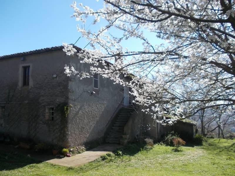 Housesitting assignment in Tarano, Italy