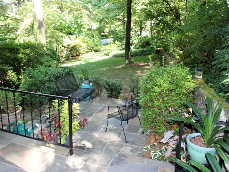 Housesitting assignment in Tryon, North Carolina, United States
