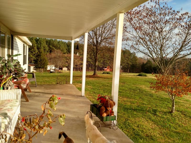Housesitting assignment in Kings Mountain, North Carolina, United States