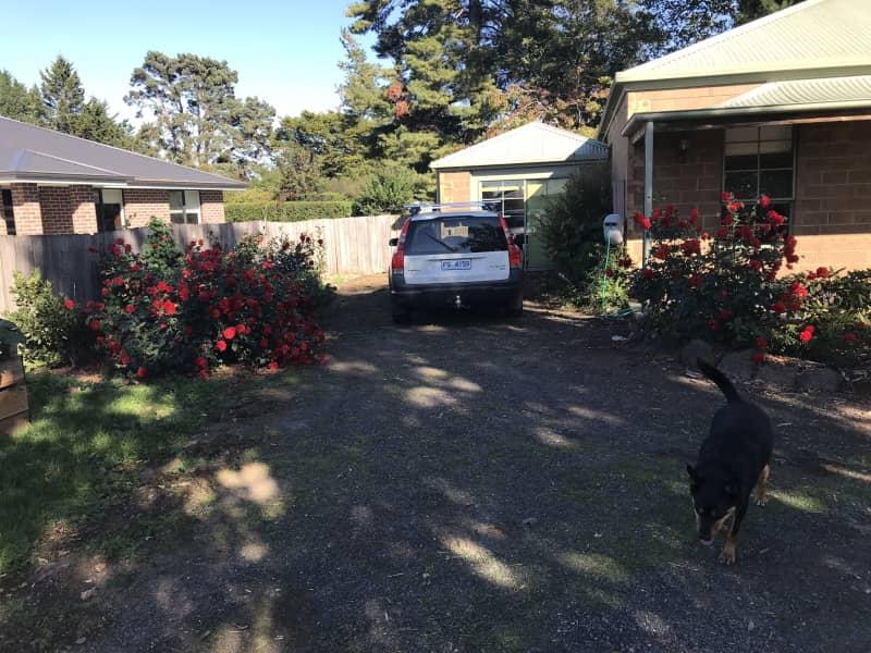 Housesitting assignment in Westbury, Tasmania, Australia