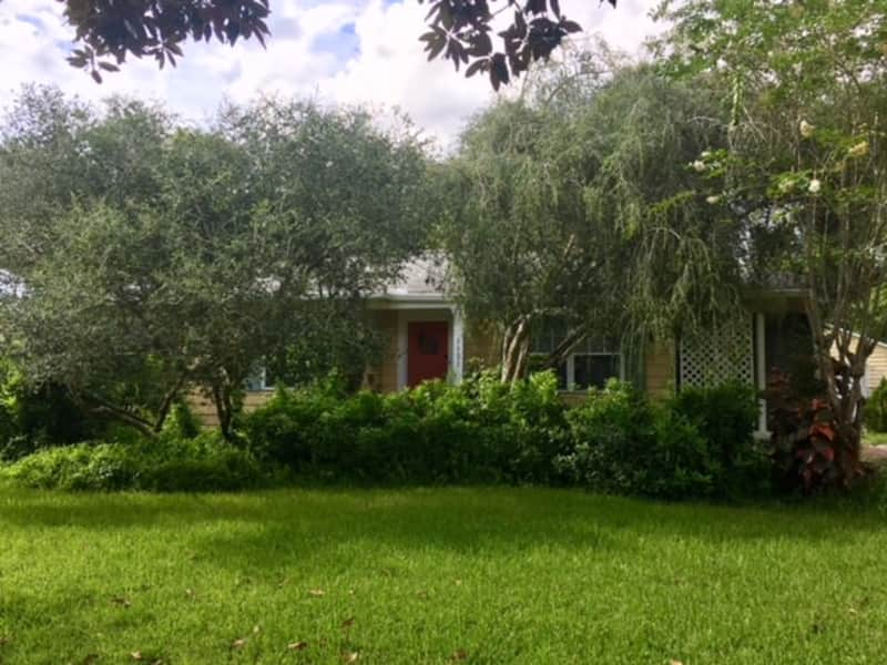 Housesitting assignment in Orlando, Florida, United States