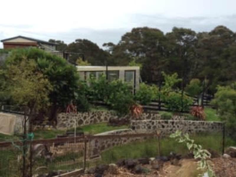 Housesitting assignment in Te Kauwhata, New Zealand