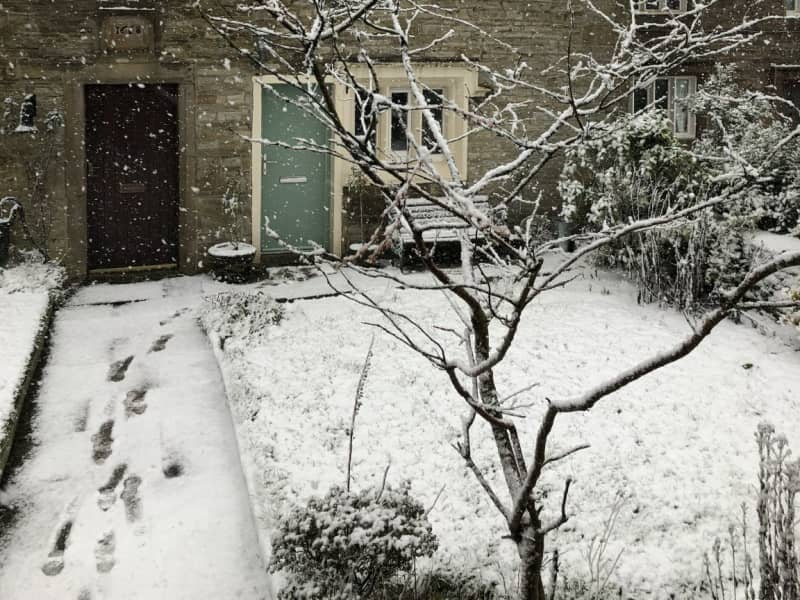 Housesitting assignment in Accrington, United Kingdom