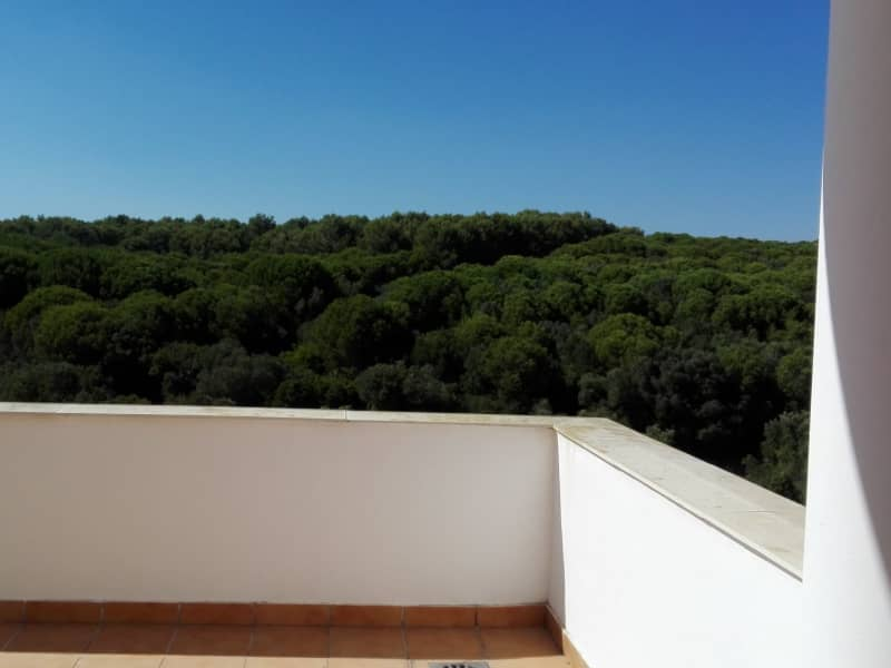 Housesitting assignment in Alcaidesa, Spain