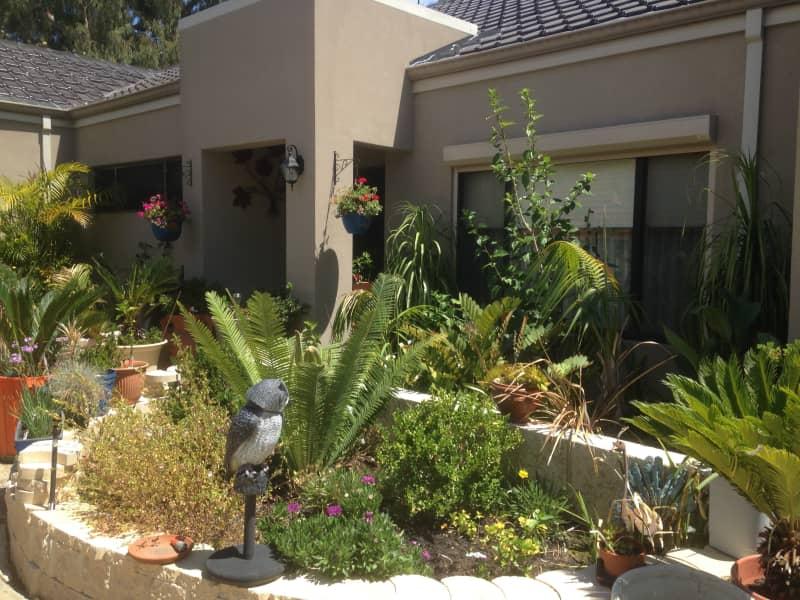 Housesitting assignment in East Fremantle, Western Australia, Australia