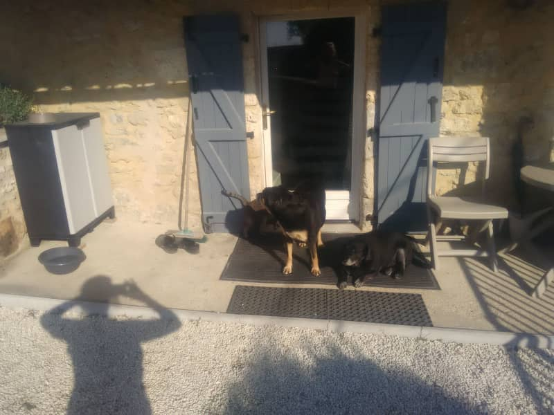 Housesitting assignment in Brantôme, France