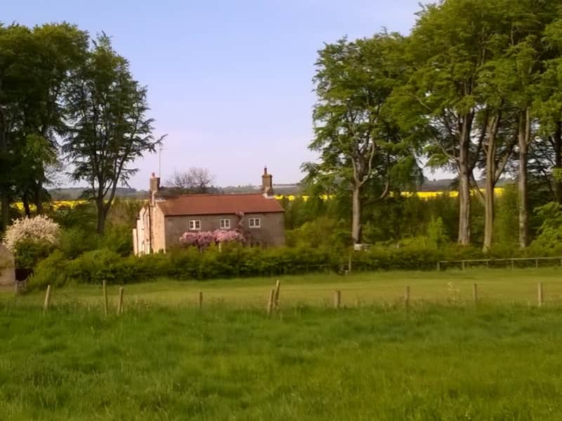 Housesitting assignment in Harnham, United Kingdom