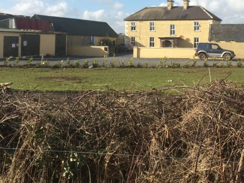 Housesitting assignment in Roscrea, Ireland