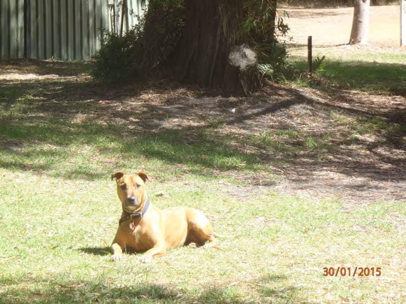 Clare from Margaret River, Western Australia, Australia