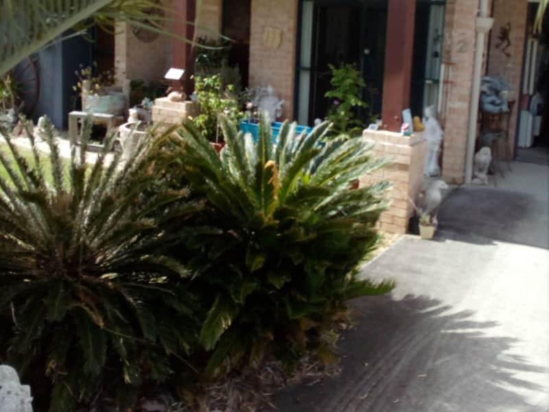 Housesitting assignment in Plainland, Queensland, Australia