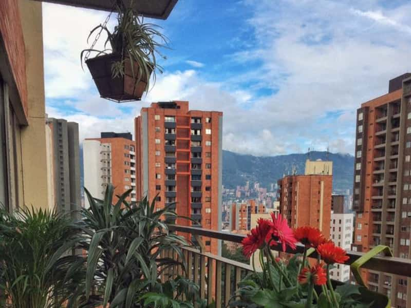 Housesitting assignment in Medellín, Colombia