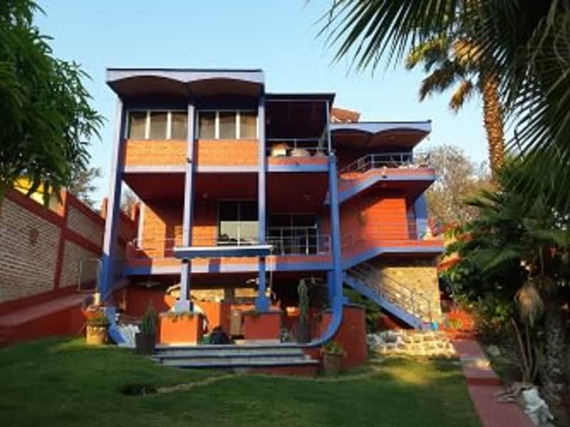 Housesitting assignment in Chapala, Mexico
