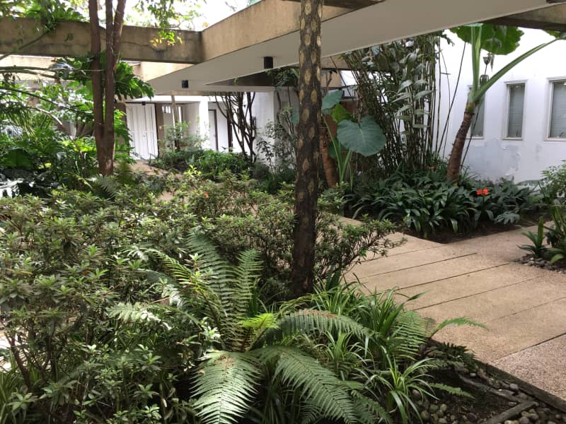 Housesitting assignment in Bogot Colombia House Sitting