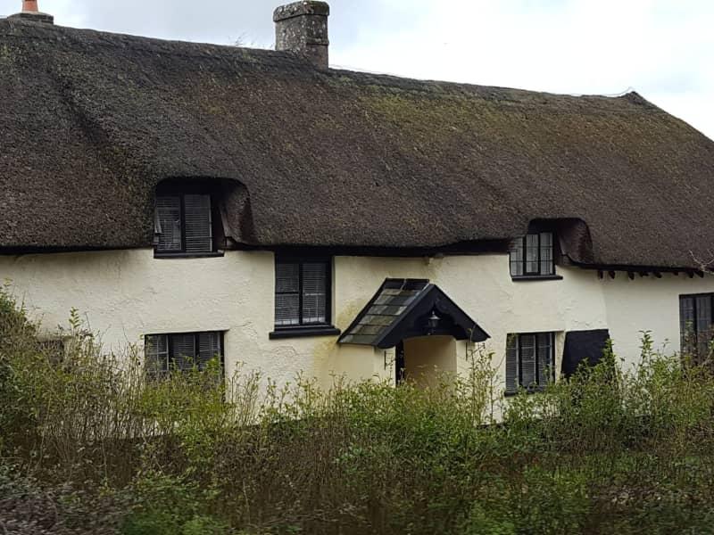 Housesitting assignment in Broadhembury, United Kingdom