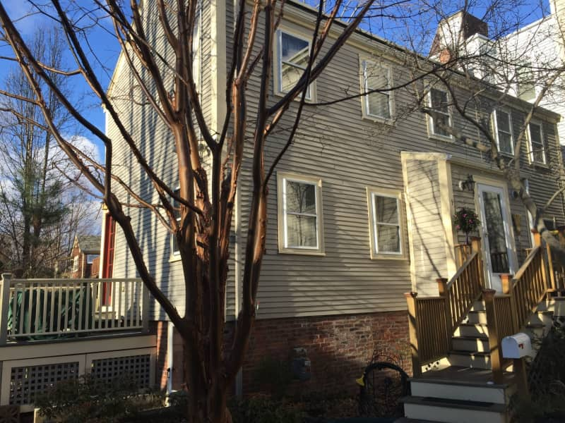 Housesitting assignment in Cambridge, Massachusetts, United States