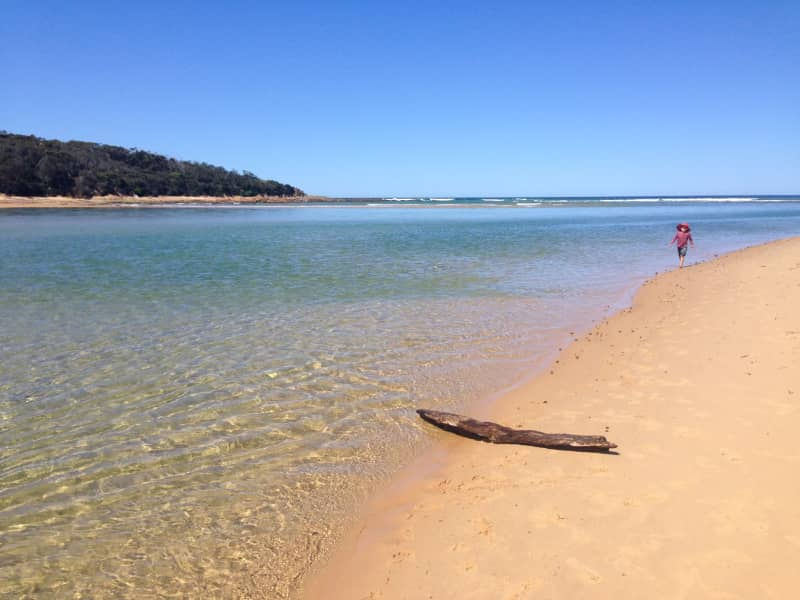 Housesitting assignment in Tanja, New South Wales, Australia