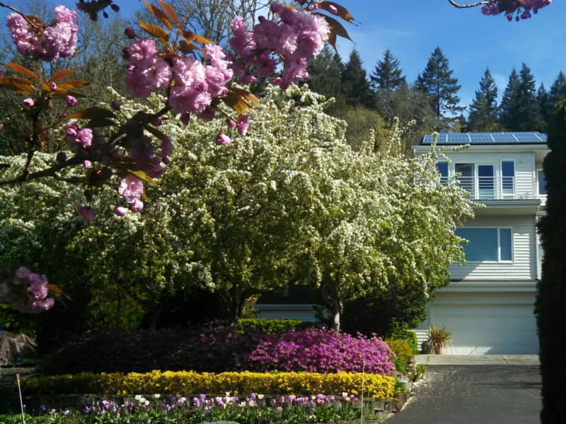 Housesitting assignment in Washougal, Washington, United States