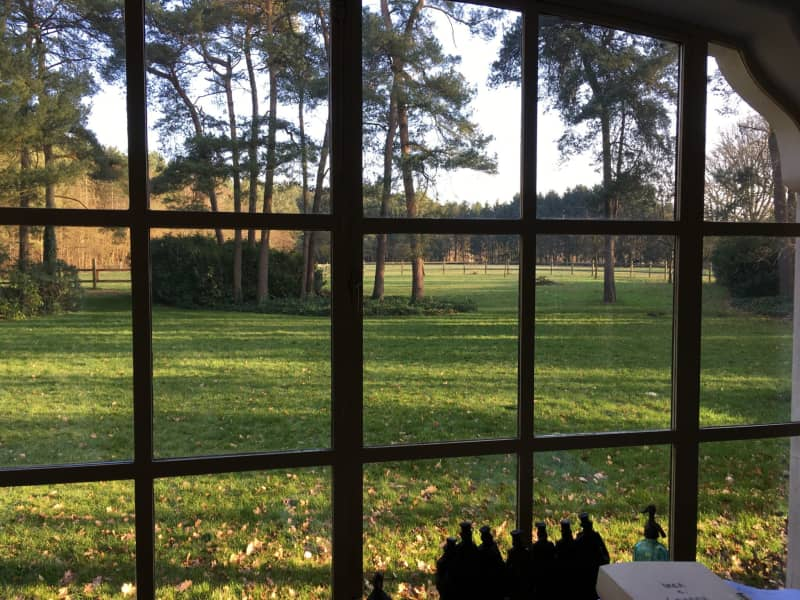 Housesitting assignment in Zutendaal, Belgium