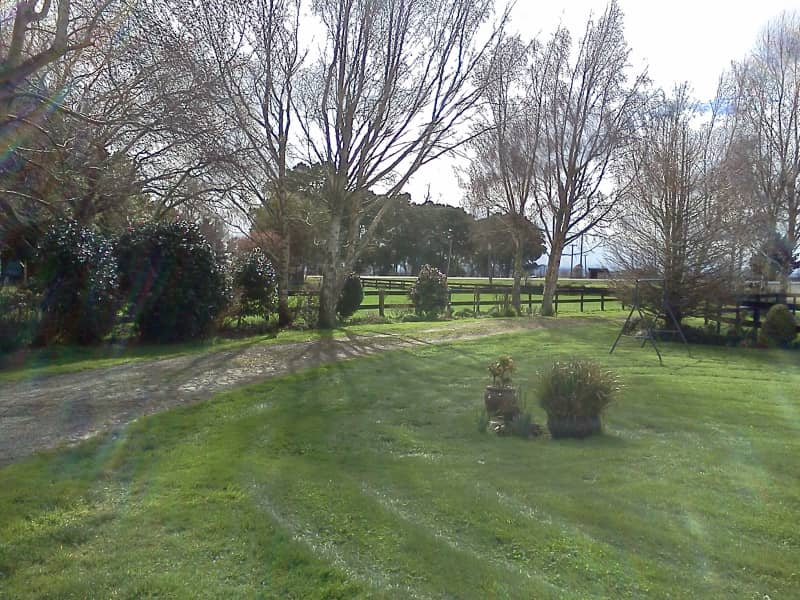 Housesitting assignment in Hamilton, New Zealand