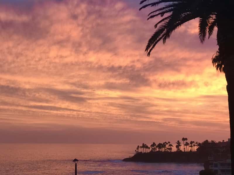 Housesitting assignment in Laguna Beach, California, United States