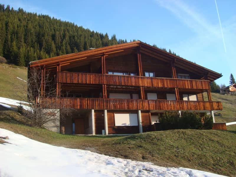 Housesitting assignment in Mürren, Switzerland