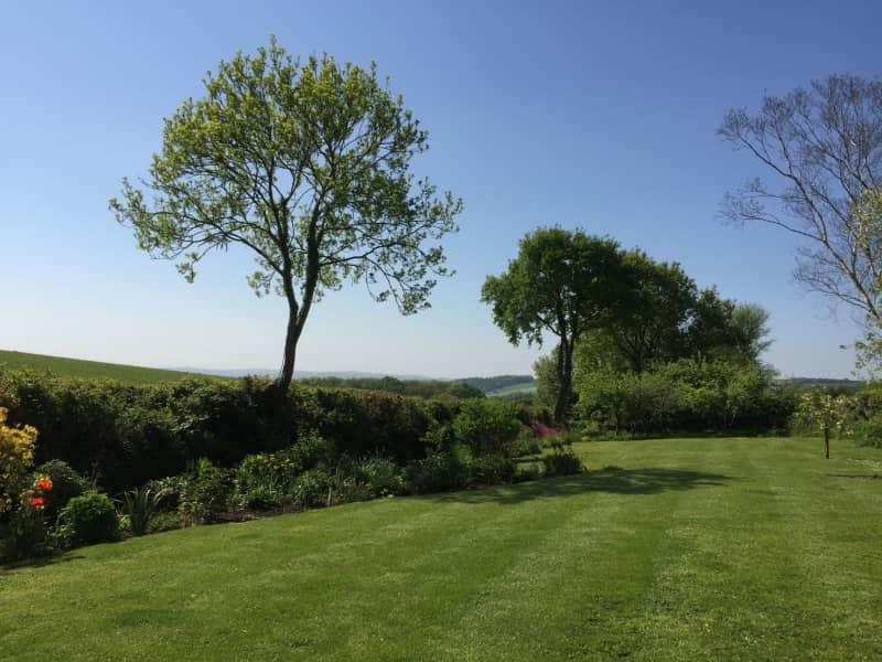 Housesitting assignment in Sandford, United Kingdom