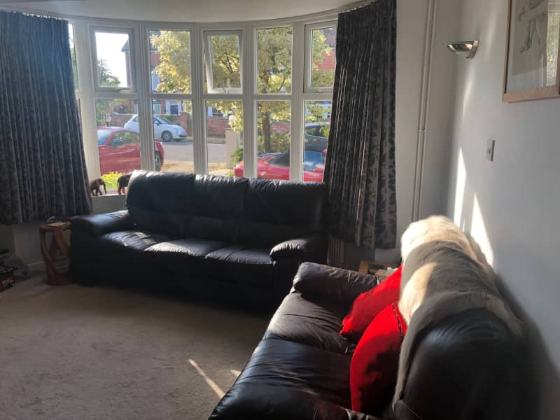 Housesitting assignment in Newmarket, United Kingdom