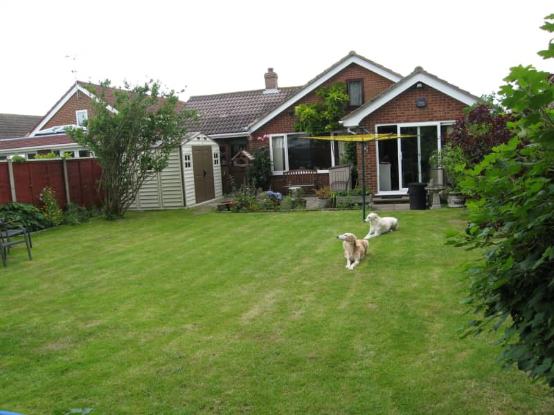 Housesitting assignment in New Romney, United Kingdom