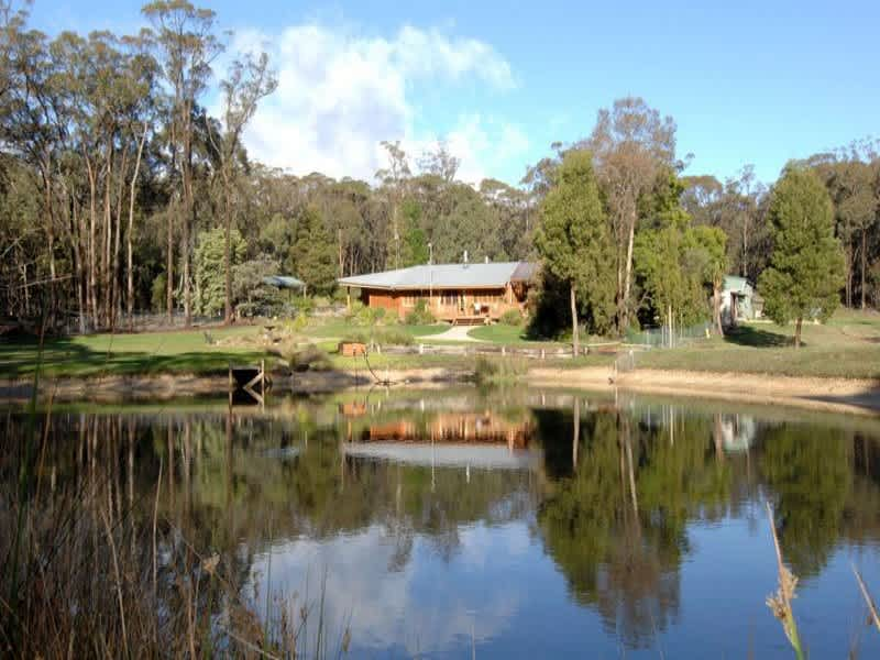 Housesitting assignment in Buninyong, Victoria, Australia