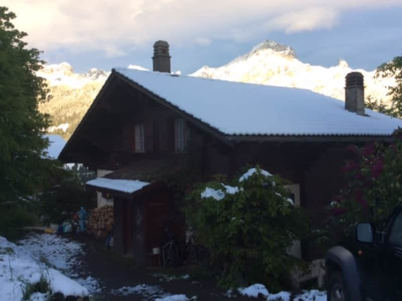Housesitting assignment in Villars-sur-Ollon, Switzerland