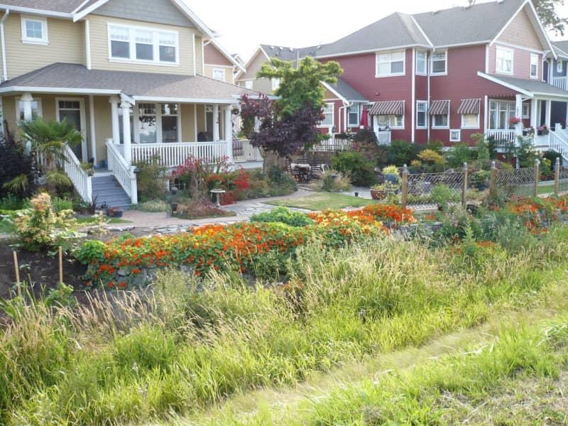 Housesitting assignment in Richmond, British Columbia, Canada