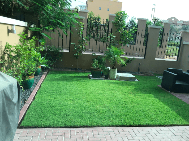 Housesitting assignment in Dubai, United Arab Emirates